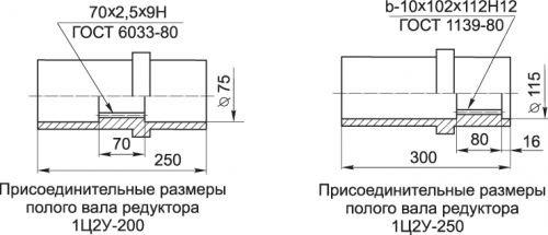 1Ц2У Полый вал 200 и 250